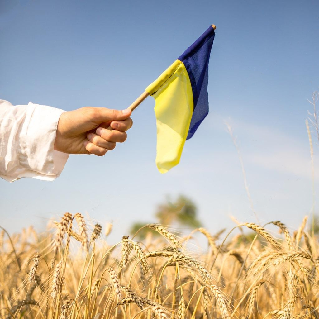 depositphotos_50067169-stock-photo-hand-with-ukrainian-flag (1)
